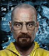 Mixed Martial Arts Fighter - Walter White
