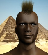 Mixed Martial Arts Fighter - Shaka Zulu