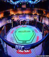 MMA MHandicapper - MMA Profitcy