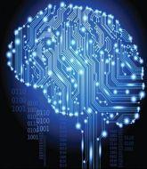 MMA MHandicapper - HybridIntelligence