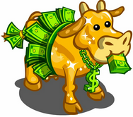 Mixed Martial Arts Management - Cash Cow