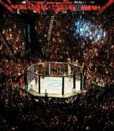 MMA MHandicapper - Bill09