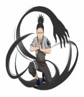 Mixed Martial Arts Management - Shikamaru Nara