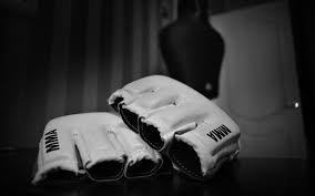MMA MHandicapper - Combat MMA