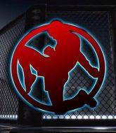 MMA MHandicapper - Flying  Knee