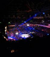 MMA MHandicapper - Owachim  Hansen 2020
