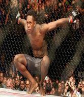 MMA MHandicapper - The Punisher