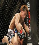 MMA MHandicapper - Brendan  MMA