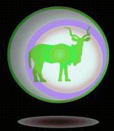 MMA MHandicapper - Eastern Antelope